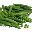 Tall Telephone Garden Peas