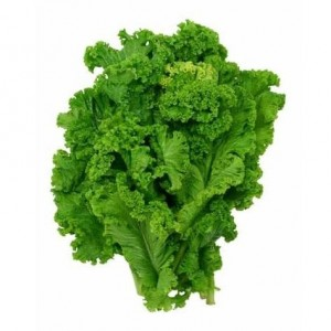 Southern Giant Mustard Greens