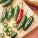 Serrano Tampequino Pepper