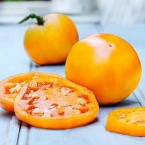 Golden Jublilee Tomato