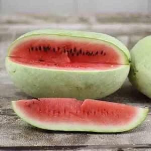 Ali Baba Watermelon