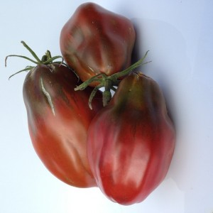 Black Pepper Tomato