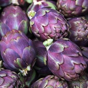 Violet de Provence Artichoke