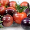Blueberries Tomato