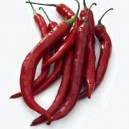 Long Slim Red Cayenne Pepper