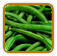 Beans Growing Guide