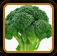 Broccoli Growing Guide