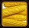 Corn Growing Guide