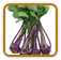 Kohlrabi Growing Guide